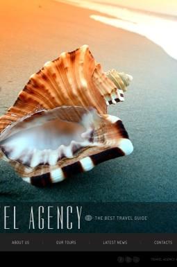 HTML шаблон №41926 на тему агентство путешествий