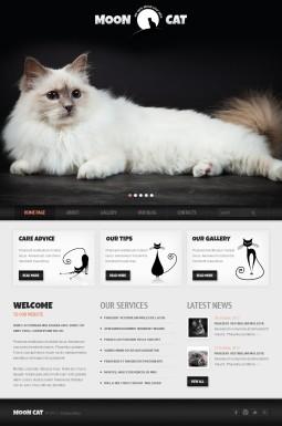 Адаптивный WordPress шаблон №42117 на тему кошки