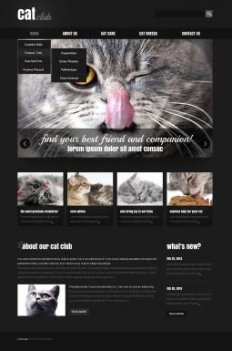 Адаптивный HTML шаблон №44278 на тему кошки