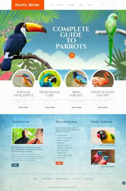 Адаптивный HTML шаблон №46369 на тему птицы